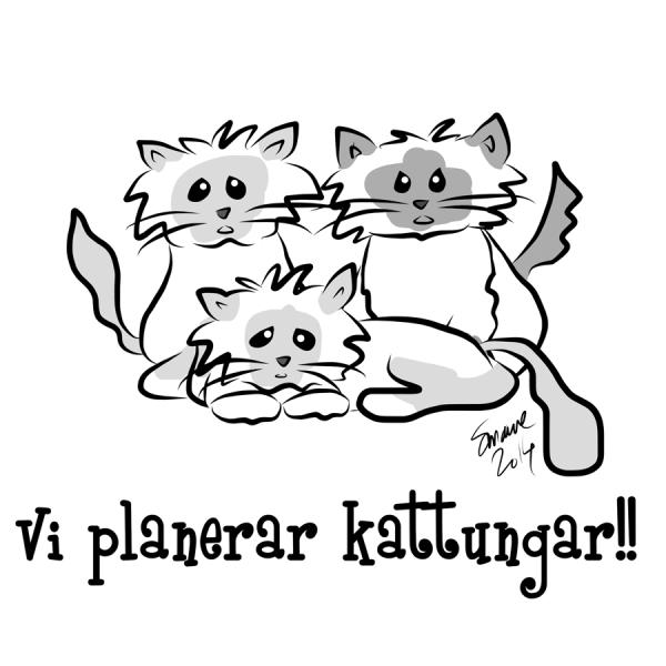 Vi_planerar_kattungar_sig